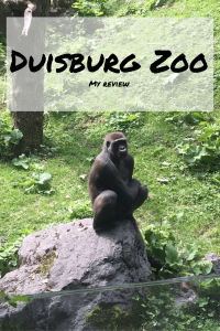 Duisburg Zoo Tapped Out Travellers