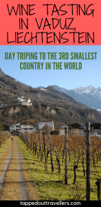 Day trip to Vaduz, Leichtenstein for wine tasting. | Switzerland with kids | Switzerland for Christmas | Switzerland in winter | Family Travel | Travel with kids