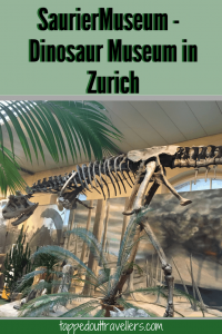 SaurierMuseum - Dinosaur Museum in Zurich Switzerland Road trip with kids | | Switzerland with kids  | Switzerland for Christmas | Switzerland in winter | Family Travel | Travel with kids