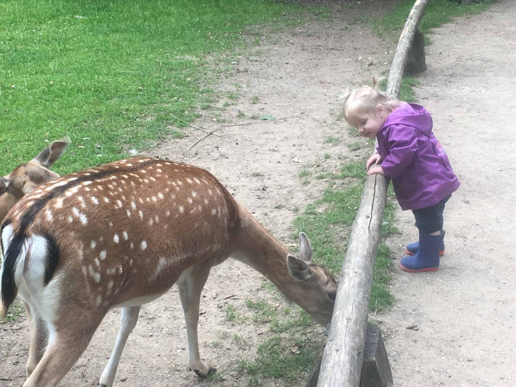 Looking for free things to do in Dusseldorf with kids? Check out this list of free things to do with the Dusseldorf card, as well as outdoor parks and event centers that can be enjoyed for free by all. Wild Park | Dusseldorf | Germany