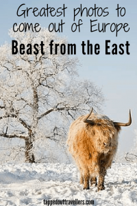 Beast from the East