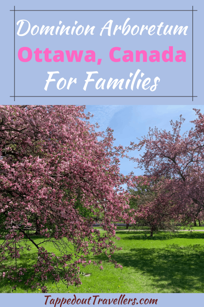 Exploring the Dominion Arboretum with your family