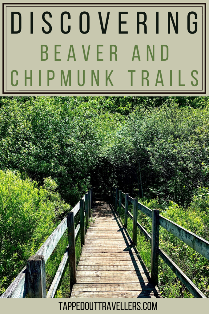 Ottawa's Beaver and Chipmunk Trails