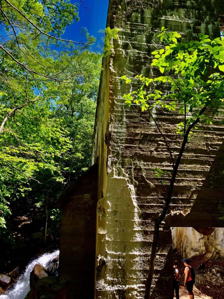 "It's the ideal time hike in Gatineau Park with trilliums carpeting the woodland floor. For an easy outing check out the Thomas ""Carbide"" Willson ruins."