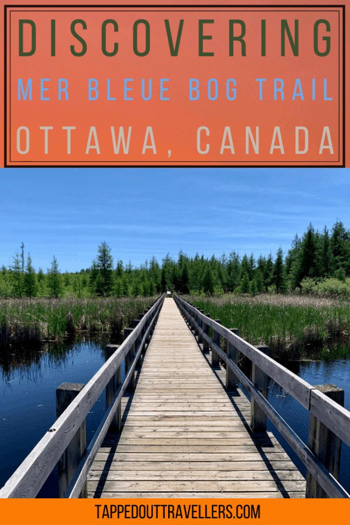 Mer Bleue Bog trail, Ottawa's favorite hiking trail