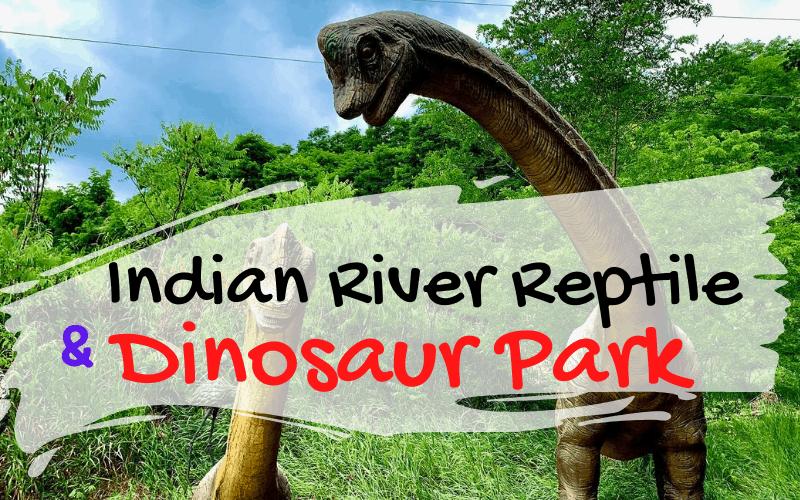 Indian River Reptile & Dinosaur Park